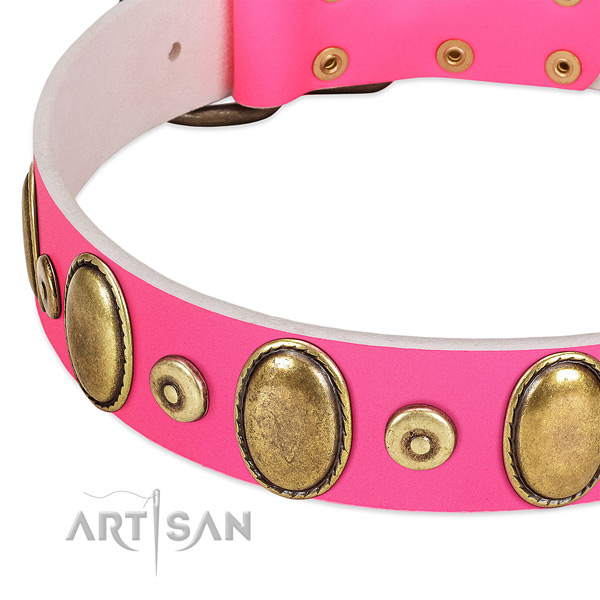 Top rate full grain leather collar with rust-proof studs for your dog