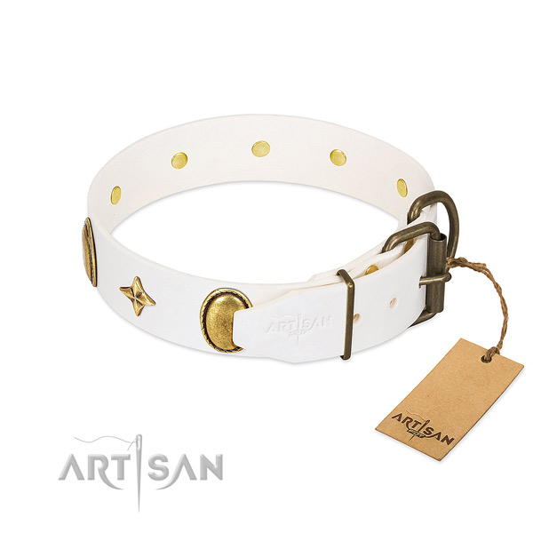 Gentle to touch full grain natural leather dog collar with unique studs