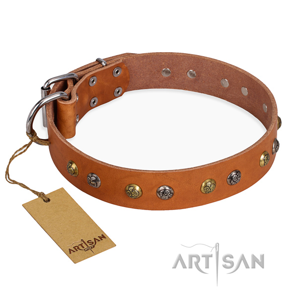 Daily use awesome dog collar with durable buckle