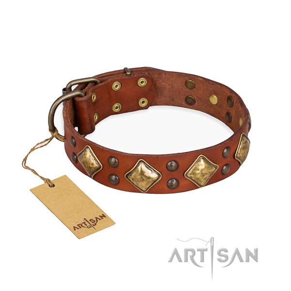 Comfortable wearing easy adjustable dog collar with rust resistant traditional buckle
