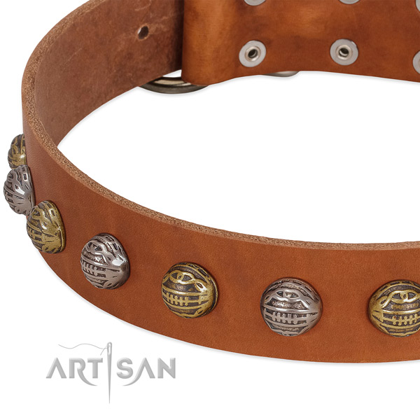 Corrosion resistant fittings on full grain natural leather collar for everyday walking your dog