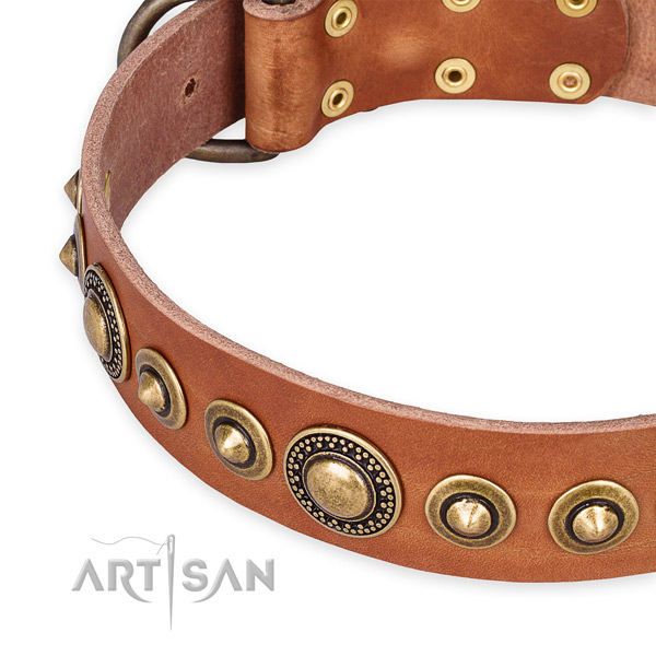 Soft full grain genuine leather dog collar handmade for your beautiful canine