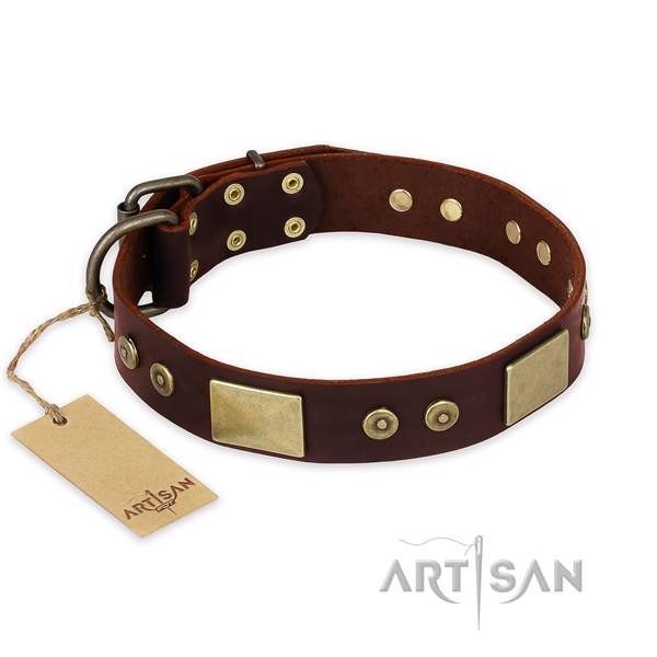 Awesome full grain natural leather dog collar for daily walking