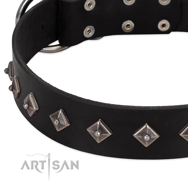 Unique collar of leather for your beautiful doggie
