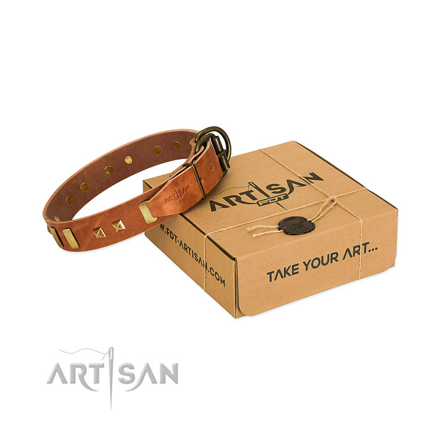 Soft to touch full grain leather dog collar with studs for daily use