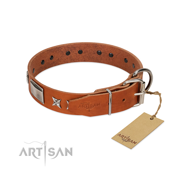 Fashionable dog collar of natural leather