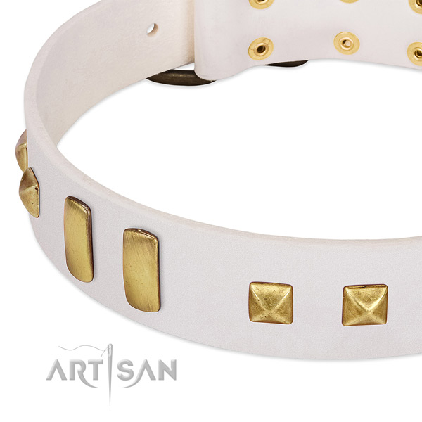 Quality leather dog collar with embellishments for easy wearing