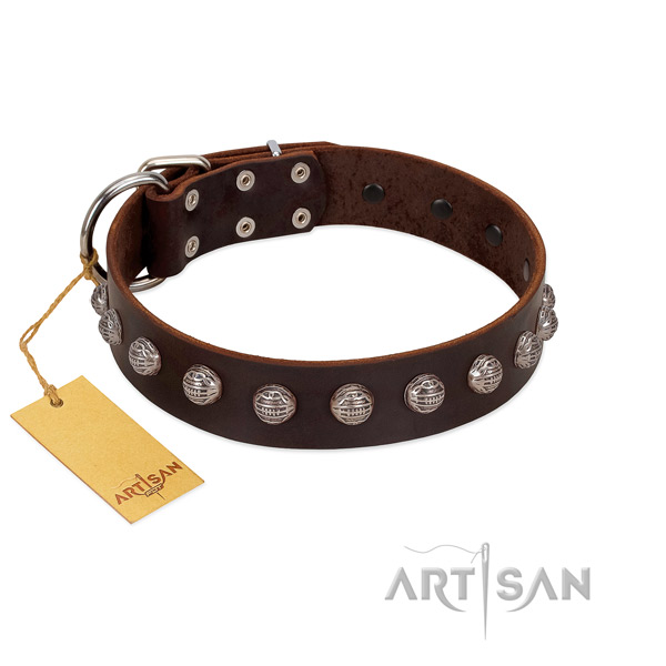 Rust resistant D-ring on unique full grain leather dog collar