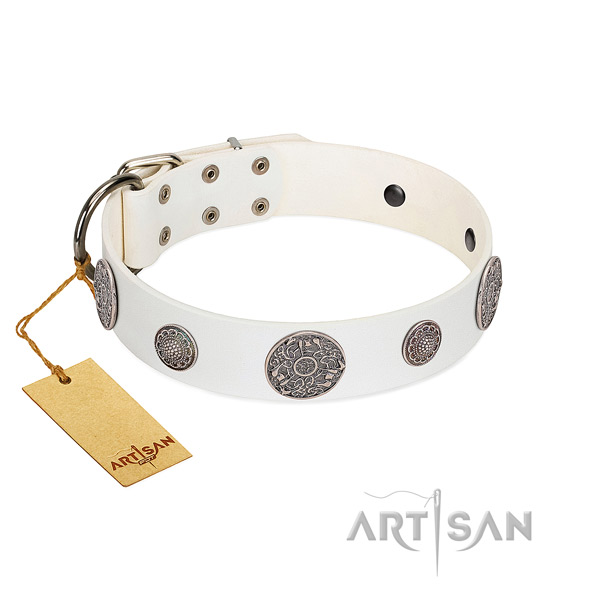 Adjustable genuine leather collar for your attractive doggie