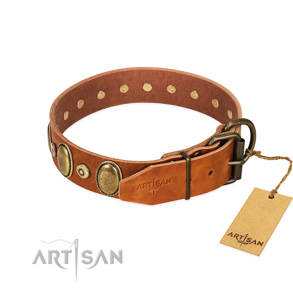 Corrosion proof fittings on stylish walking collar for your canine