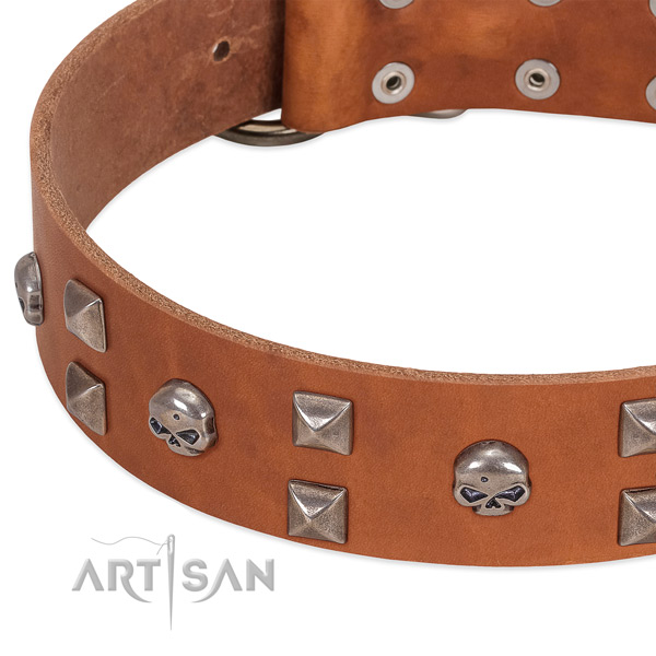 Strong genuine leather dog collar handcrafted for your doggie