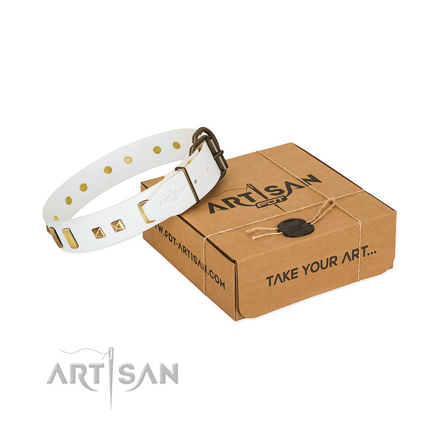 Gentle to touch natural leather dog collar with embellishments for stylish walking