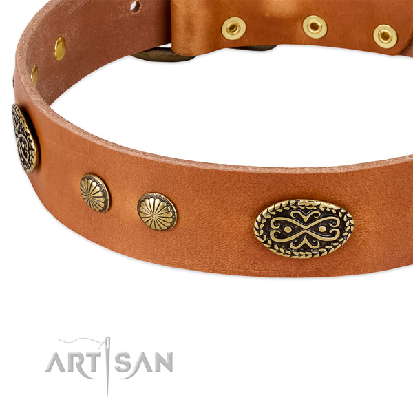 Reliable hardware on full grain natural leather dog collar for your dog