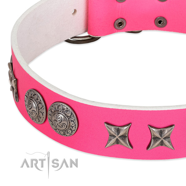 Reliable genuine leather dog collar crafted for your canine