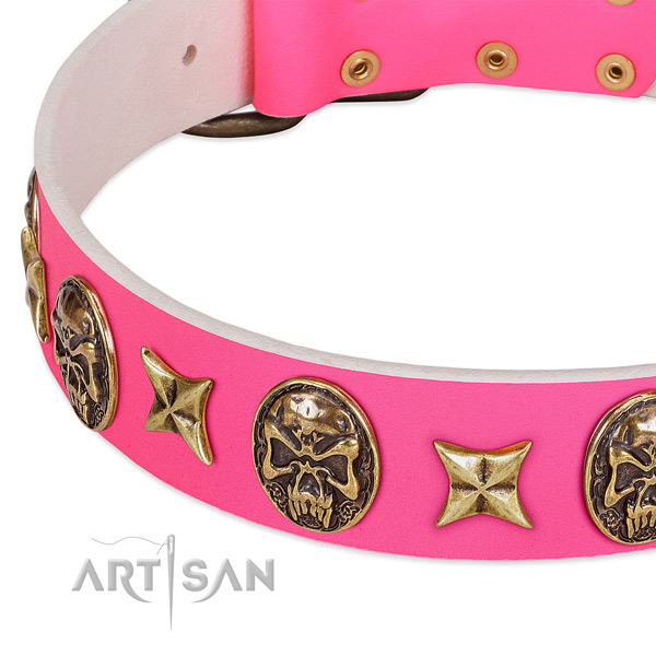 Full grain leather dog collar with exquisite studs