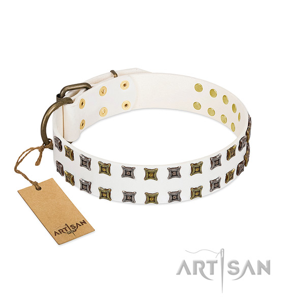Durable genuine leather dog collar with studs for your doggie