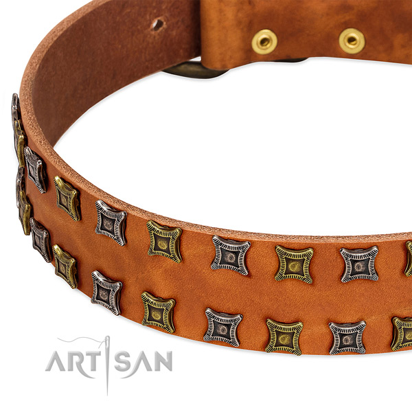 High quality full grain natural leather dog collar for your handsome doggie