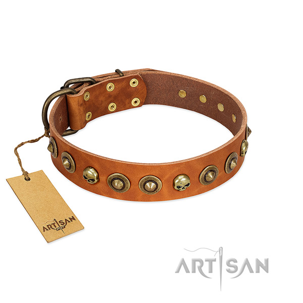 Genuine leather collar with impressive decorations for your canine