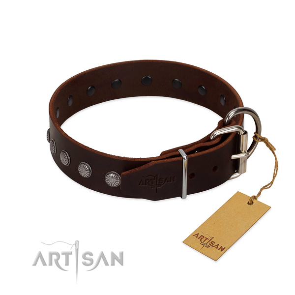 Designer leather collar for handy use your doggie