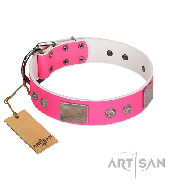 Strong fittings on full grain genuine leather dog collar for walking