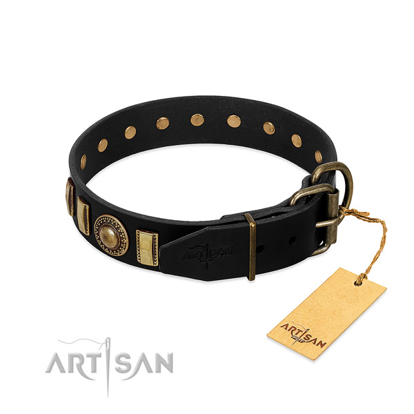 Soft to touch full grain leather dog collar with studs