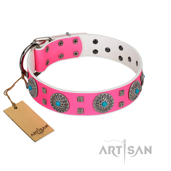 Stylish walking natural leather dog collar with exceptional embellishments