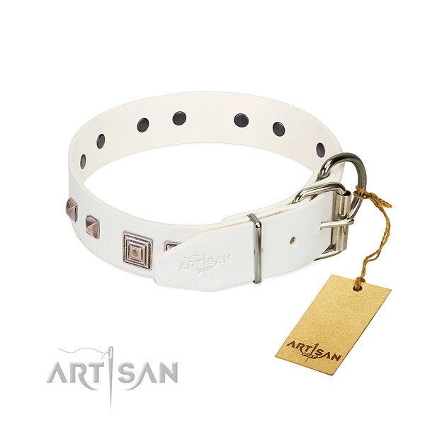 Amazing collar of full grain natural leather for your attractive dog