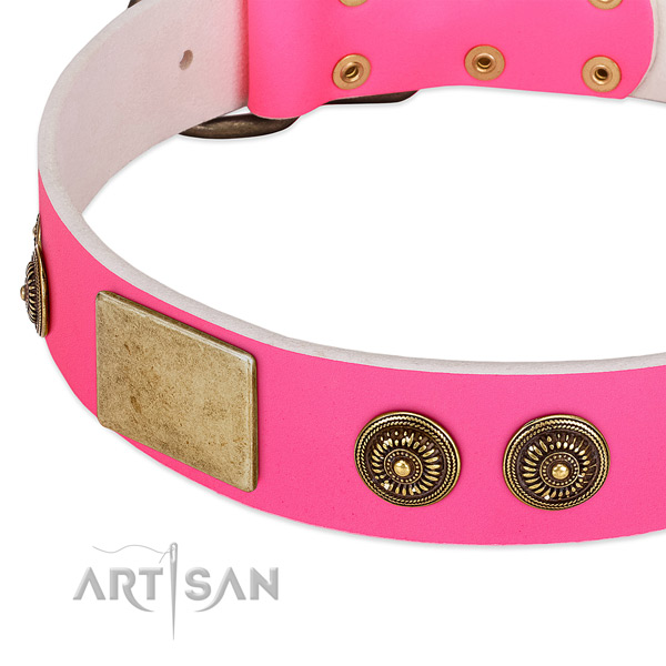 Top notch dog collar handcrafted for your impressive pet