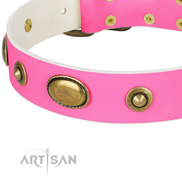 Rust-proof adornments on full grain natural leather dog collar for your canine
