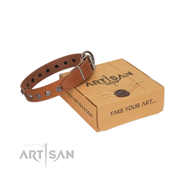 Quality leather dog collar with amazing adornments