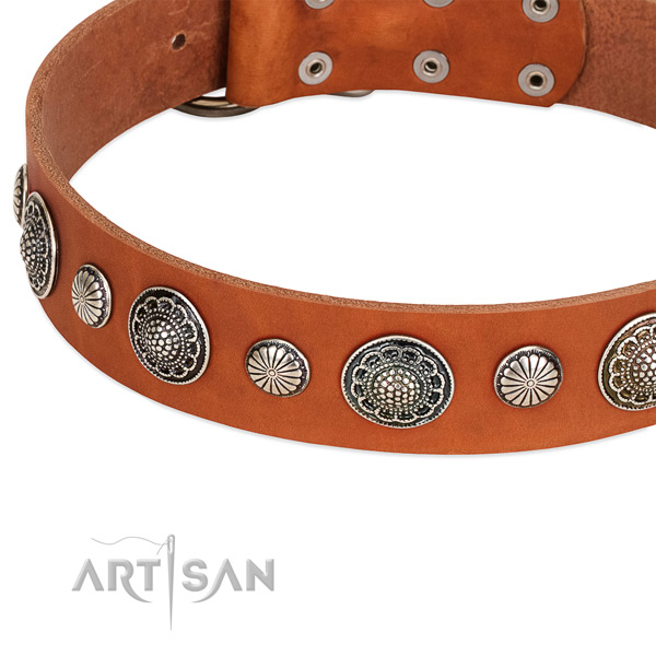 Full grain leather collar with strong D-ring for your impressive doggie