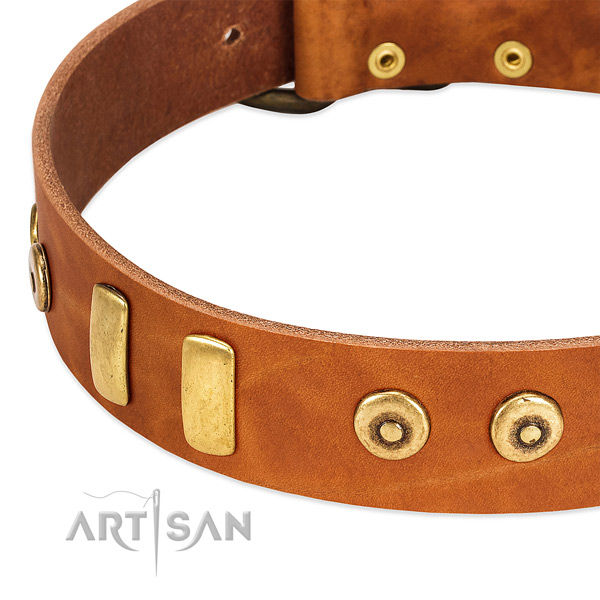 Reliable leather collar with fashionable decorations for your dog