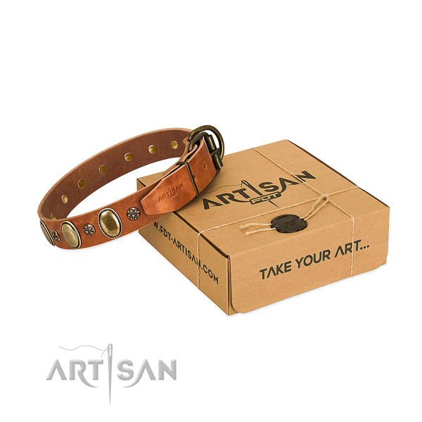 Walking top rate full grain natural leather dog collar with decorations