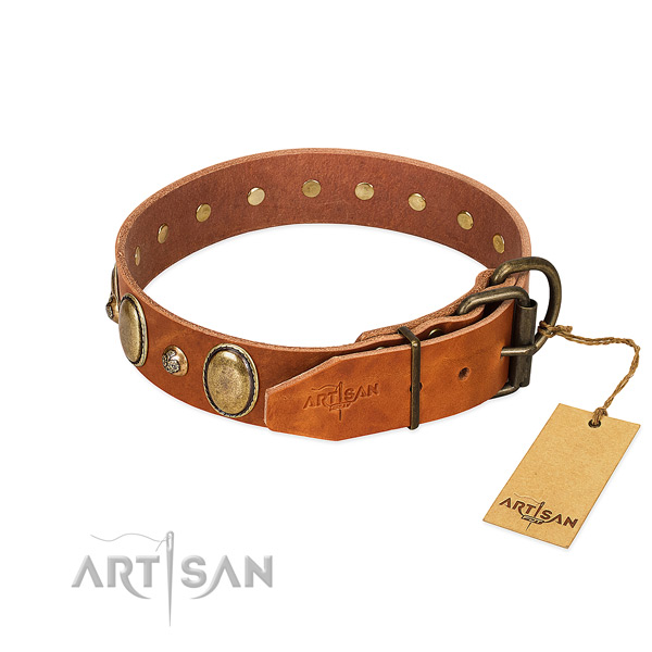 Rust resistant D-ring on full grain genuine leather collar for basic training your doggie