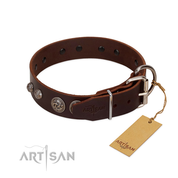 Rust-proof studs on full grain leather dog collar for your dog