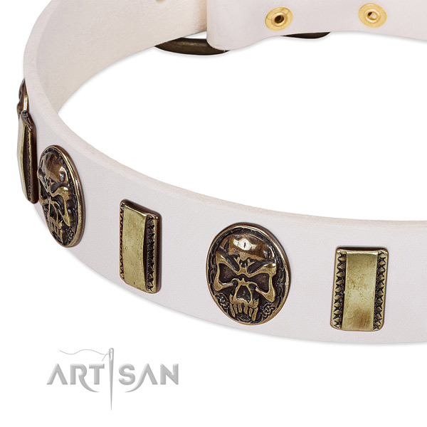 Durable studs on genuine leather dog collar for your pet