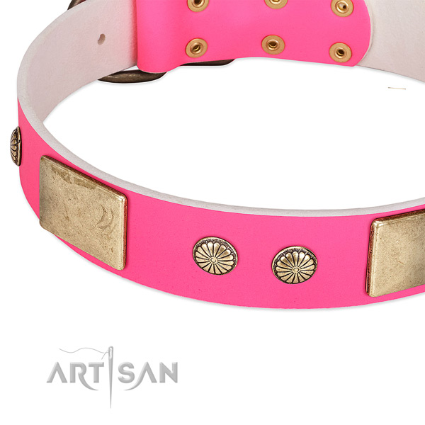 Reliable fittings on genuine leather dog collar for your dog