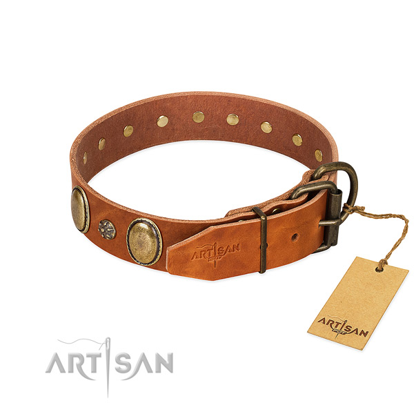 Stylish walking soft to touch full grain natural leather dog collar