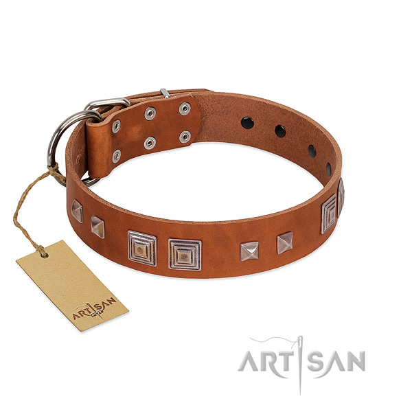 Corrosion proof traditional buckle on full grain genuine leather dog collar for everyday use