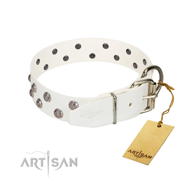 Reliable fittings on adorned full grain genuine leather dog collar