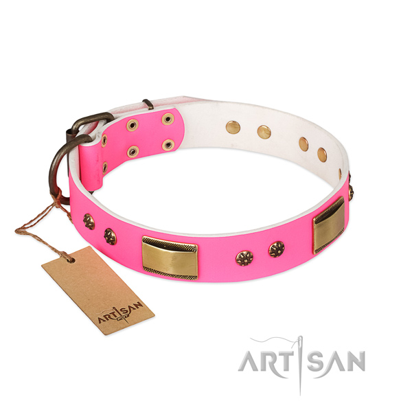 Handcrafted leather collar for your pet