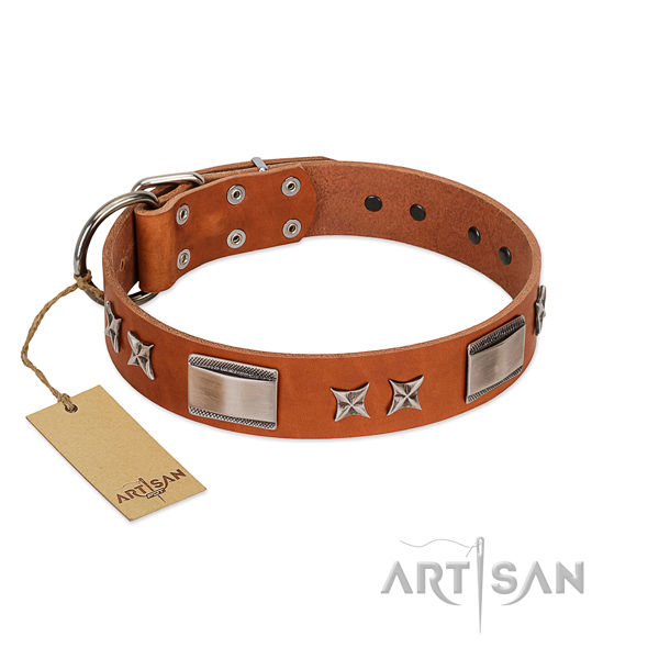 Top notch leather dog collar with reliable hardware