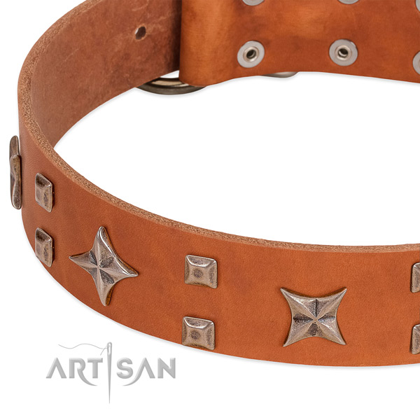 Rust resistant hardware on leather collar for walking your four-legged friend