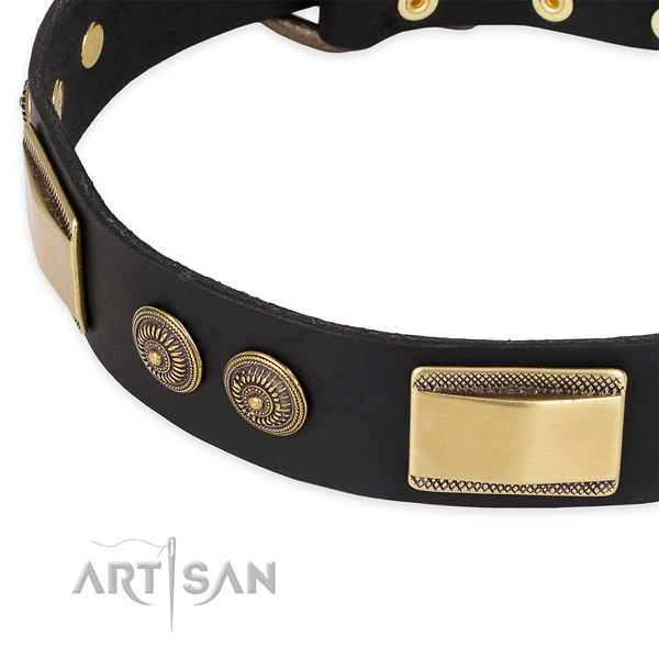 Studded natural genuine leather collar for your impressive canine