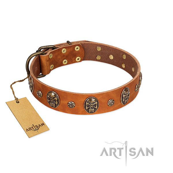Inimitable genuine leather collar for your dog