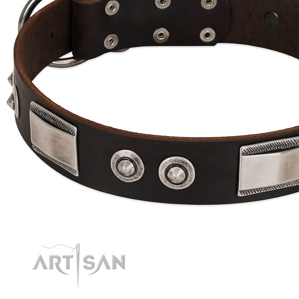 Exquisite full grain leather collar for your pet