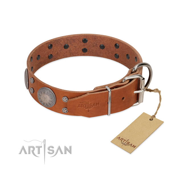 Strong traditional buckle on leather dog collar for stylish walking
