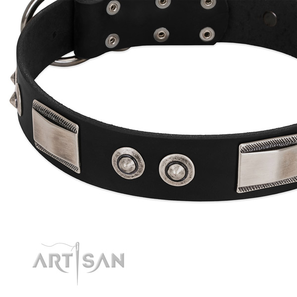 Trendy collar of natural leather for your beautiful dog