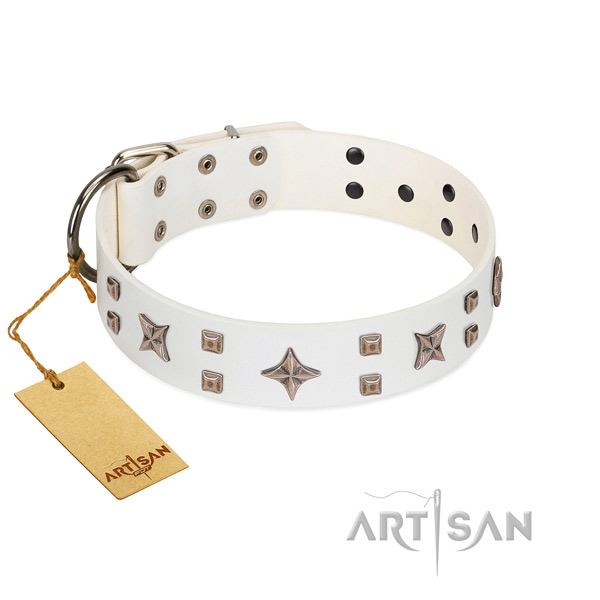 Comfy wearing genuine leather dog collar with exquisite adornments