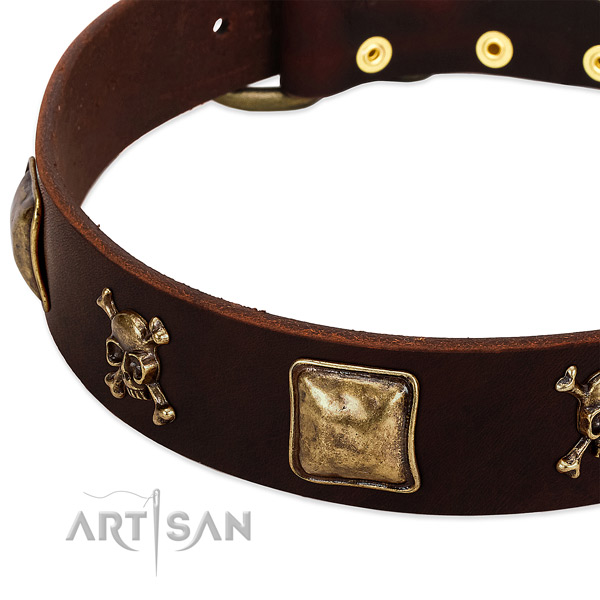 Reliable natural leather dog collar with exceptional studs